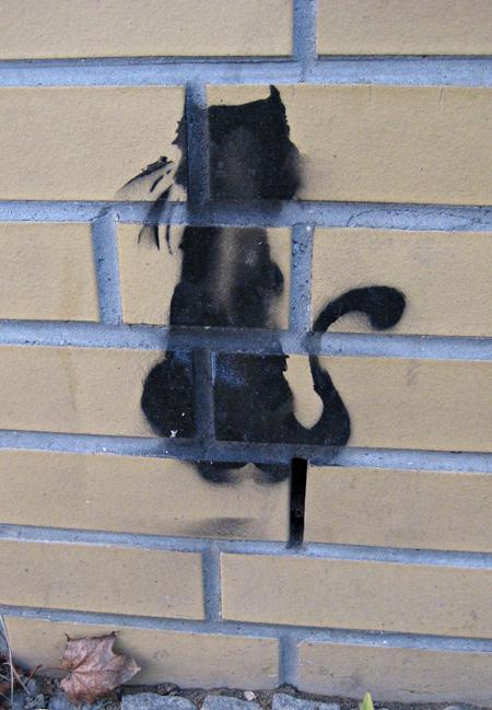 streetcat.jpg
