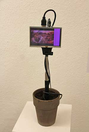 "Oliver Orthuber - Skulptur ""Blumenmaschine"""