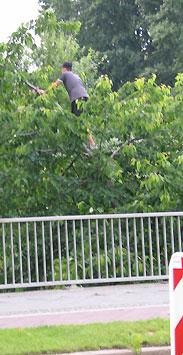Kirschernte auf der Modersohbrücke